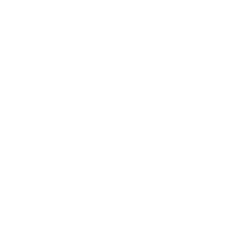 BONNE PROJECTION