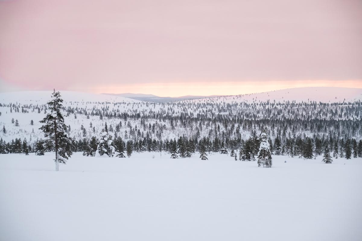 1 Duvet pour 2 - Laponie finlandaise